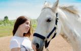 Bachbloesem Mix 120 Stress bij paarden