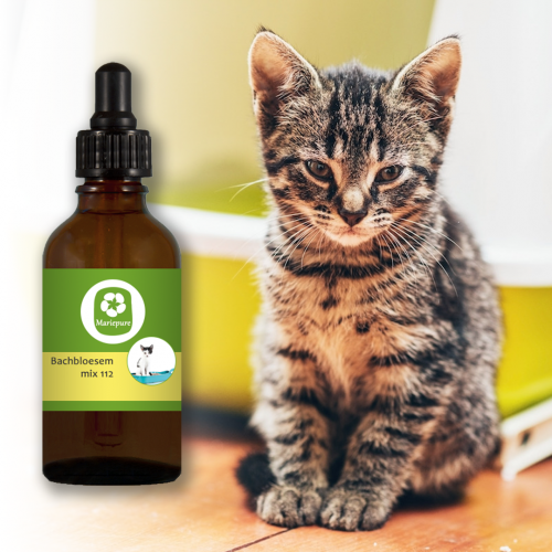 Bachbloesem Mix 112 Onzindelijkheid bij katten