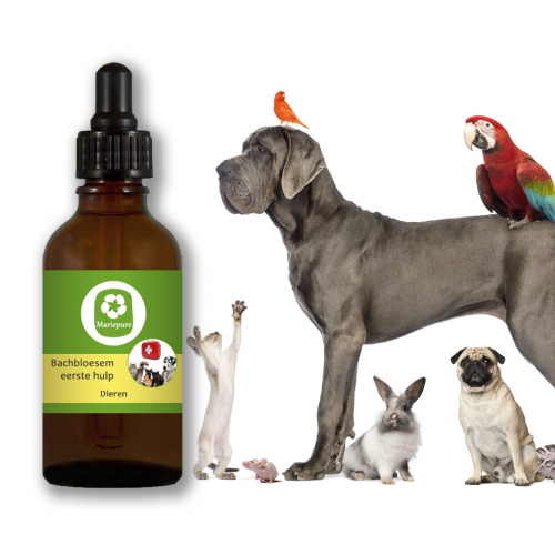 Eerste hulp remedie voor dieren